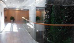 מסדרון ומדרגות